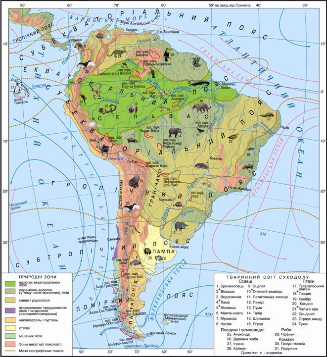 Картинки по запросу природні зони південної америки